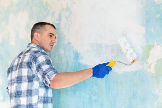 Структурная краска для фасада - как выбрать и как наносить
